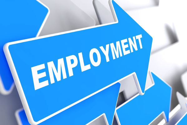 The real employment rate in SA